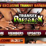 Transex Bareback Verotel